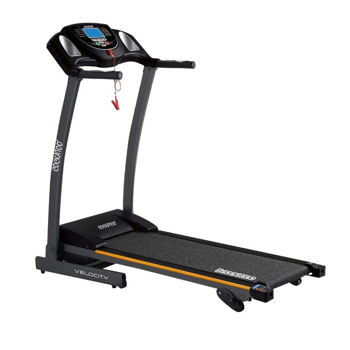 Cockatoo Velocity Motorized Treadmill