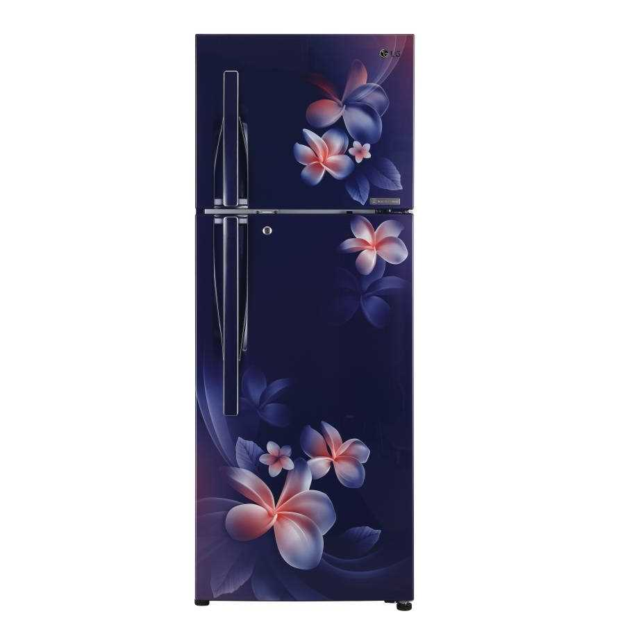 LG GL T292RBPN 260 Liters Frost Free Double Door 4 Star Refrigerator