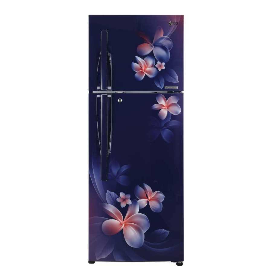 LG GL T302RBPN 284 Liters Frost Free Double Door Refrigerator