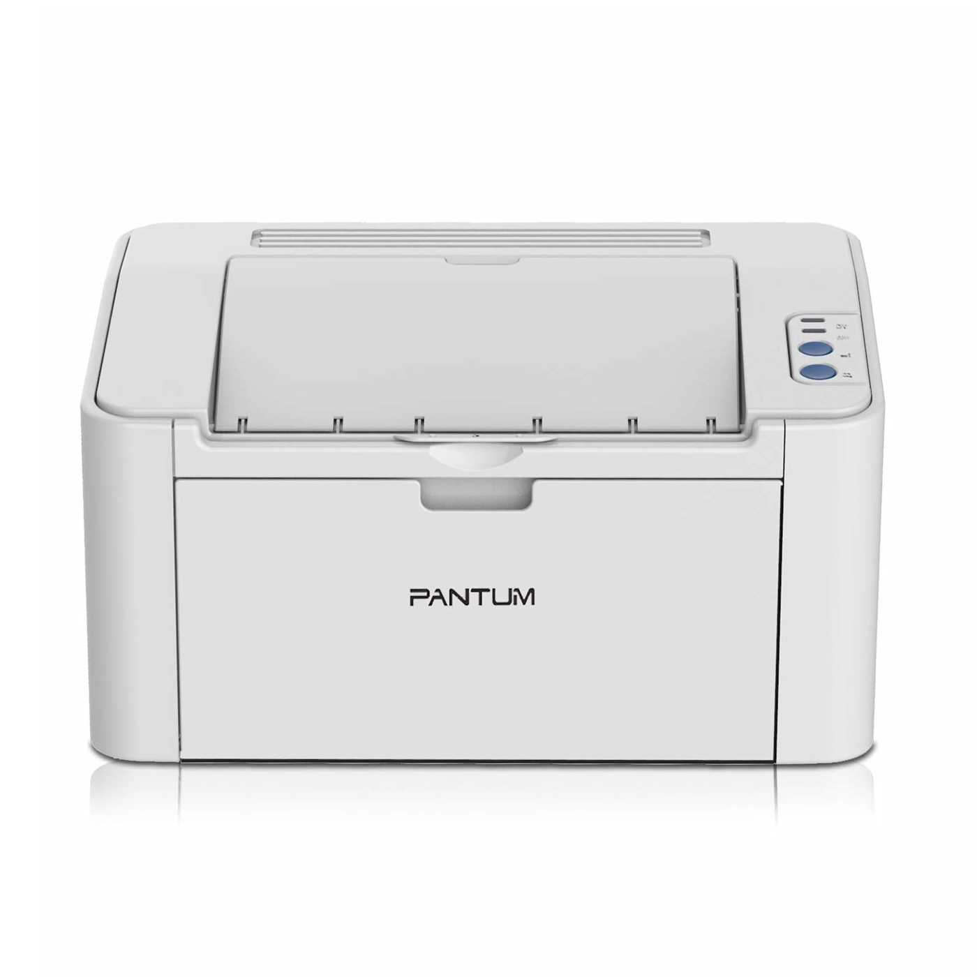 Pantum P2200 Laser Single Function Printer