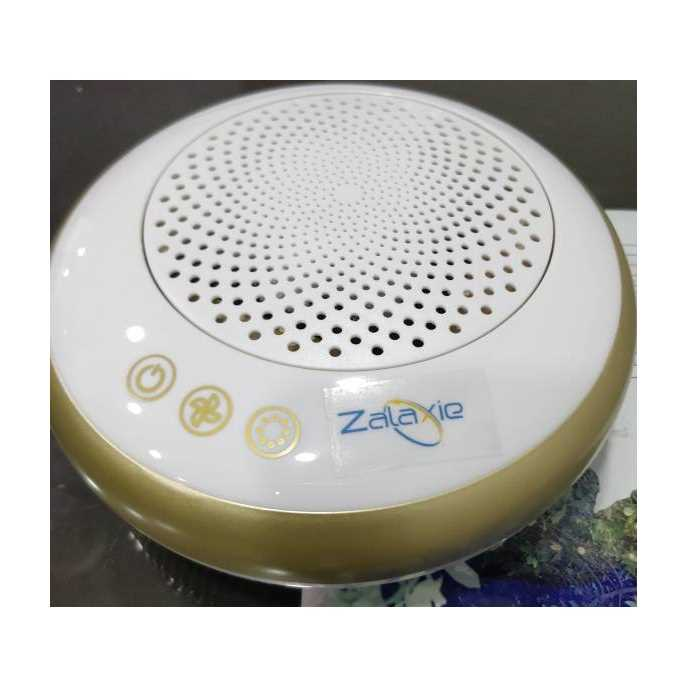 Zalaxie CP-Z001 Portable Car Air Purifier