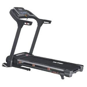 Viva T 166 Motorized Treadmill
