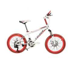 GoGo A1 Colour City 20 Inch 21 Speed Road Cycle