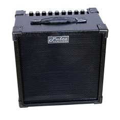 Palco Cube 40M Guitar Amplifier