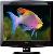 Onida LCO32HDG 32 Inch LCD Television