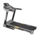Aerofit AF-419 Treadmill price in India