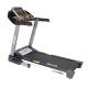 Aerofit AF-426 Treadmill price in India