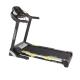 Aerofit HF146 Motorized Treadmill price in India