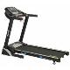 Aerofit HF905 Motorized Treadmill price in India