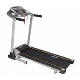 Aerofit HF906 Motorized Treadmill price in India