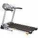Aerofit HF921 Motorized Treadmill price in India
