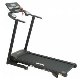 Aerofit HF931 Motorized Treadmill price in India