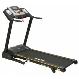 Aerofit HF935 Motorized Treadmill price in India