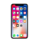 Apple iPhone X 256 GB Price