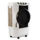 Usha Air King CD703 70 Litre Desert Air Cooler Price